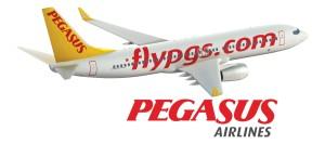Pegasus-Airlines-Logo